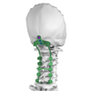 /product-detail/posterior-cervical-system-spine-titanium-orthopedic-implants-pedicle-spinal-screw-rod-60624549986.html