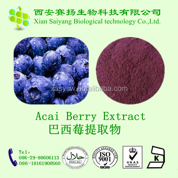 Acai Berry Extract 20 1 10:1/ Euterpe Oleracea Extract