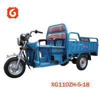 XINGE 110cc/120cc gasoline motor tricycle with competitive price