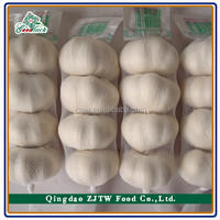 2015 Harvest China Fresh Pure White Garlic Price