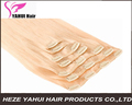 Wholesale price remy clip in human hair extension