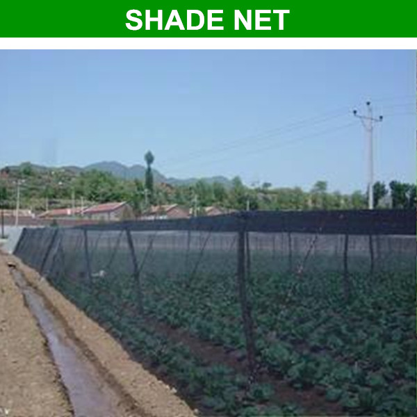china factory offer high quality extra cover net