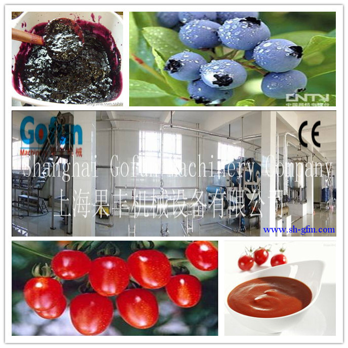 turn key buleberry/tomato/strwberry concentrate puree /jam / paste/ ketchup production line