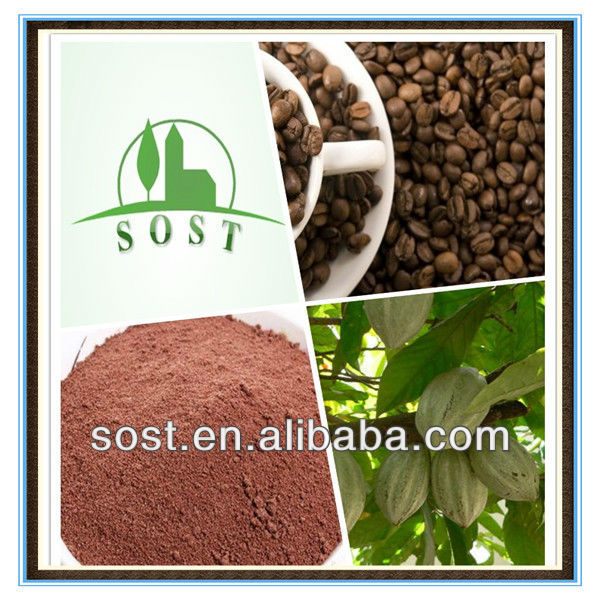Natural Plant Powder Theobroma Cacao Extract