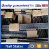 Construction Nail Stakes Building Amp Real