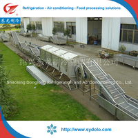 vegetable and fruit production line machine/vegetable processing line