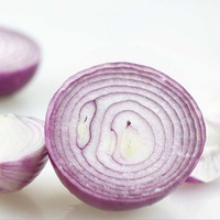 2016 new fresh onion price
