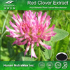 100% Natural Red Clover Extract Powder;Red Clover Plant Extract;Red Clover Extract Isoflavone