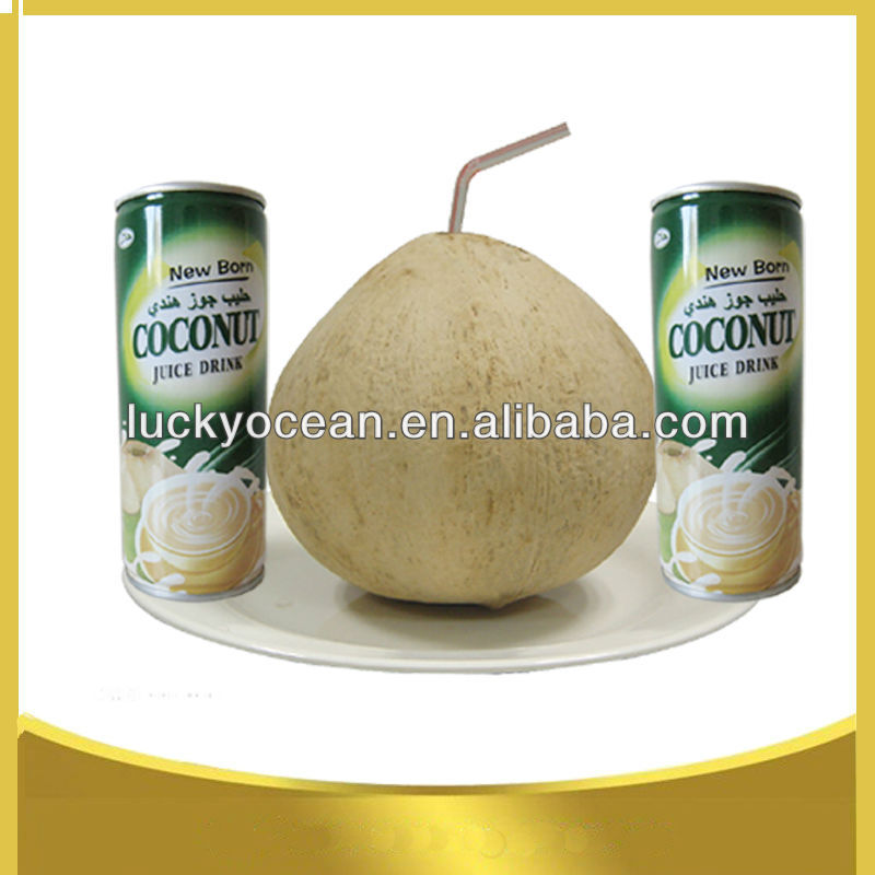 supplier coconut beverage