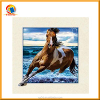 3 Dimension 3D Lenticular Picture of animal New 5D picture in 2016
