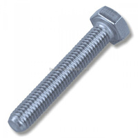 Stainless steel 304 316 and steel hex bolt din 933 m12