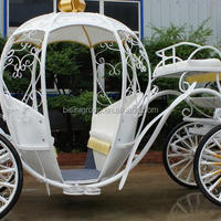 Royal Horse Carriage Wedding Horse Equipment
