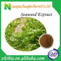 100% Pure Nature GMP Manufacture Seaweed Extract Acid 50%