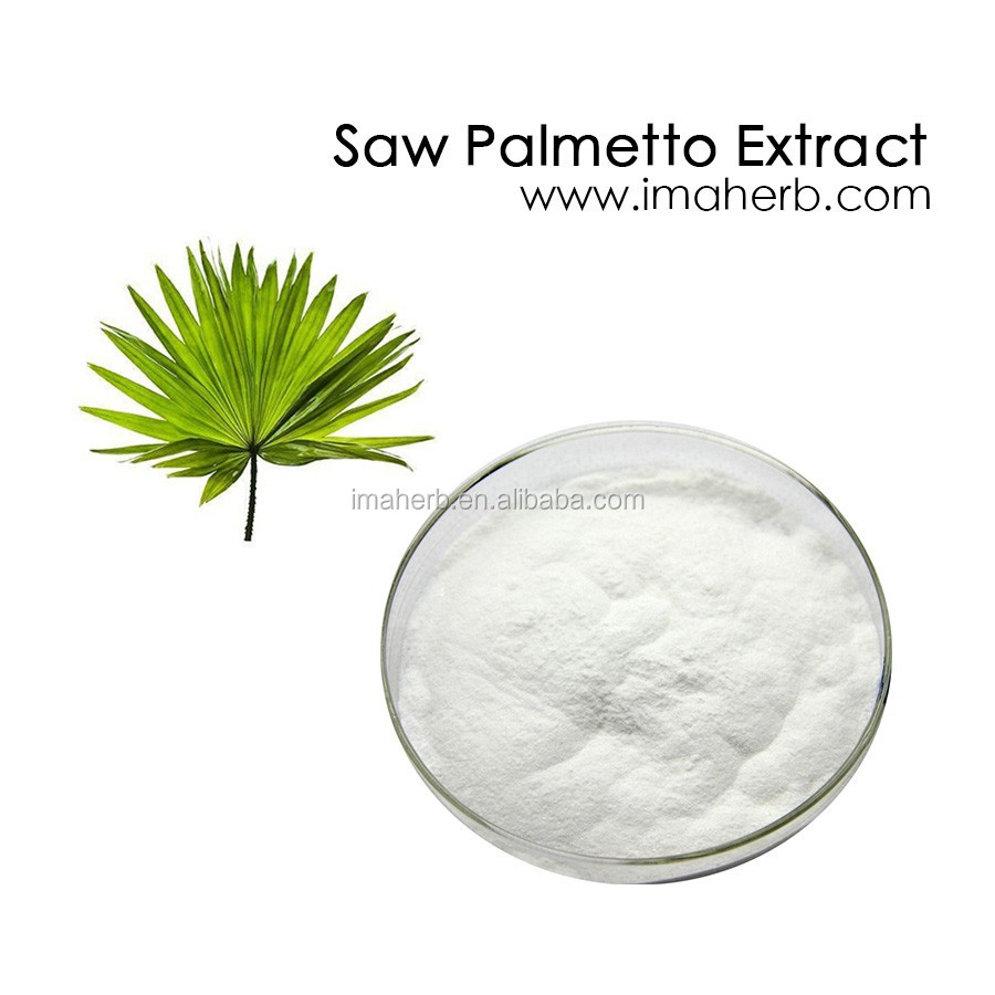 Top Grade Halal Approved saw palmetto herbal in stock