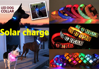 USB chargeable SOLAR rechargeable led glowing light collar for dog