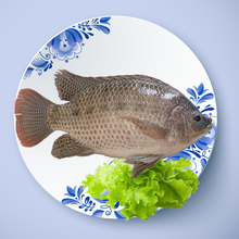 China manufacturer frozen tilapia fish whole round with top quality