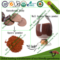 wholsale organic helps support healthy blood glucose levels cells shell-broken reishi spore powder capsule