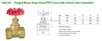 Forged Brass Stop Valve(PTFE Core with Non-return Function)--Economic Model