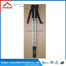 Fatory price factory directly nordic extendable walking stick