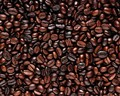 Nepal Espresso (BLEND OF NATURAL PROCESSED + WASHED) Coffee Roasted Beans