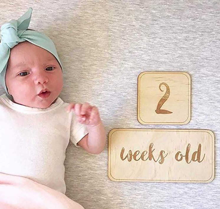 Milestone Cards, Baby's First Year, Monthly Photo Picture Props
