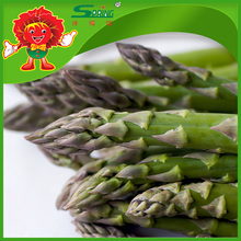 100% Organic Non-Gmo Vegetable Frozen Green Asparagus