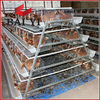 Kenya Nigeria Tanzania Chicken Farm Hot Sale Layer Poultry Battery Cages