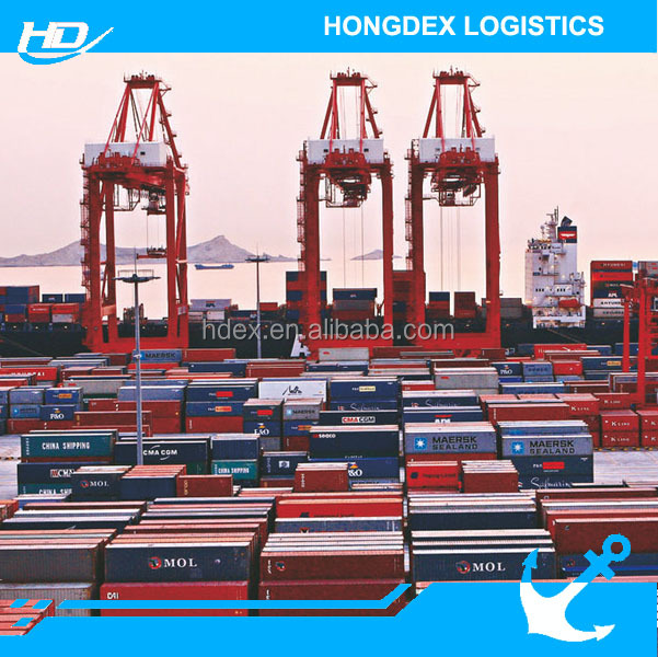 Direct Freight Forwarder Container Sea Freight to Dubai