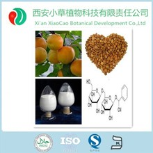 Herb Extract Amygdalin 98% / Bitter Apricot Seed Extract powder / Vitamin B17