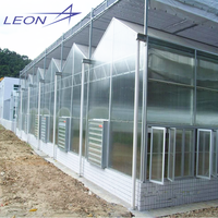 LEON Series 2016 Best Selling Garden