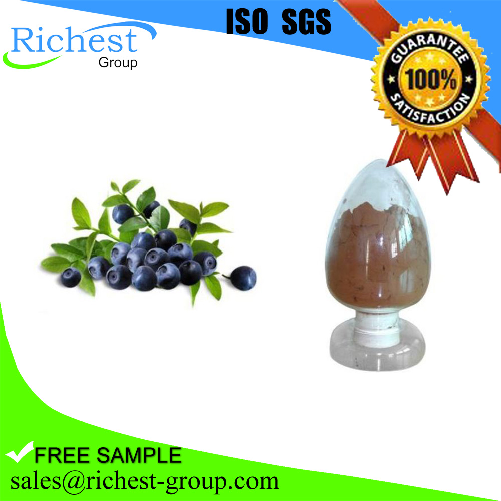 2016 best sell bilberry extract powder 25%