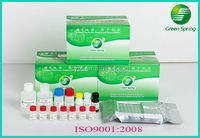 Chloramphenicol ELISA Kit food safety antibiotic tests