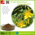 St.John's wort from direct supplying of China
