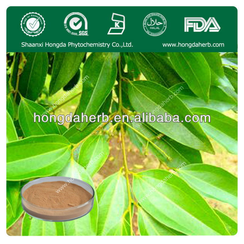 100% natural cinnamon leaf extract powder