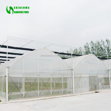 High Tech Multi Span Poly Film Agricultural Greenhouse For Hydroponics And Soil