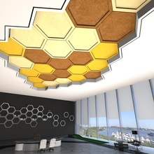 Top Supplier Carved Acoustic Ceiling Hexagon Panel for Office