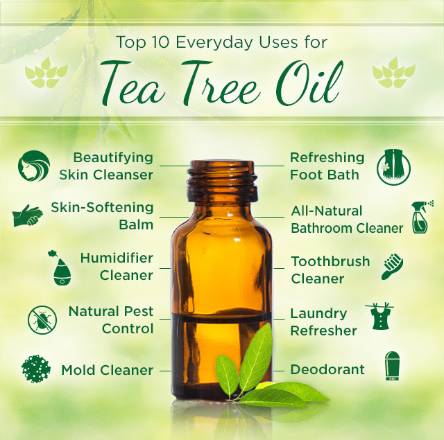 Pure Tea Tree Essential Oil For Anti-inflammatory