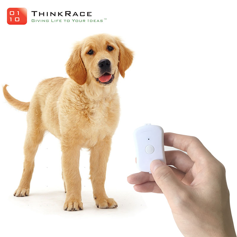 Best dog gps waterproof IP67 cheap small pet gps tracker