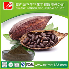 Import& Export Fresh Cocoa Beans For Cocoa Extract WIth No Impurity