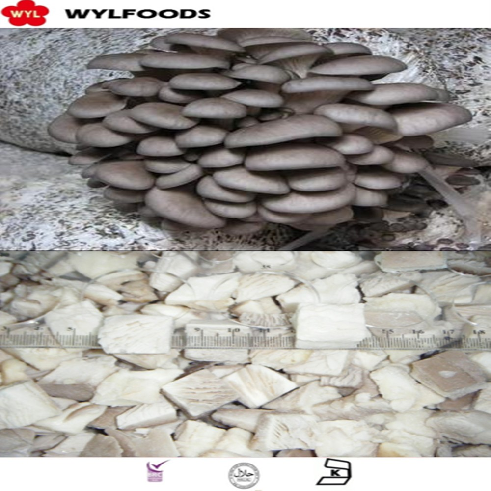 2016 china high quality wholesale price frozen oyster mushroom