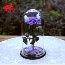 Preserved Flowers in Glass Decorative Rose Home Decoration Gift to Girlfriend Valentine's Day Mother's Day Holiday