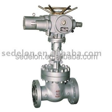 Electric Actuator gate valve(Wedge Gate Valve/Industrial gate valve)