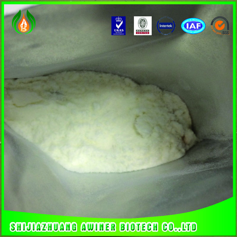 Plant growth regulator Gibberellic Acid 20%SP