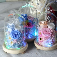 Preserved Roses In LED Glass Dome Small Rose Glass Dome For Valentine's Day