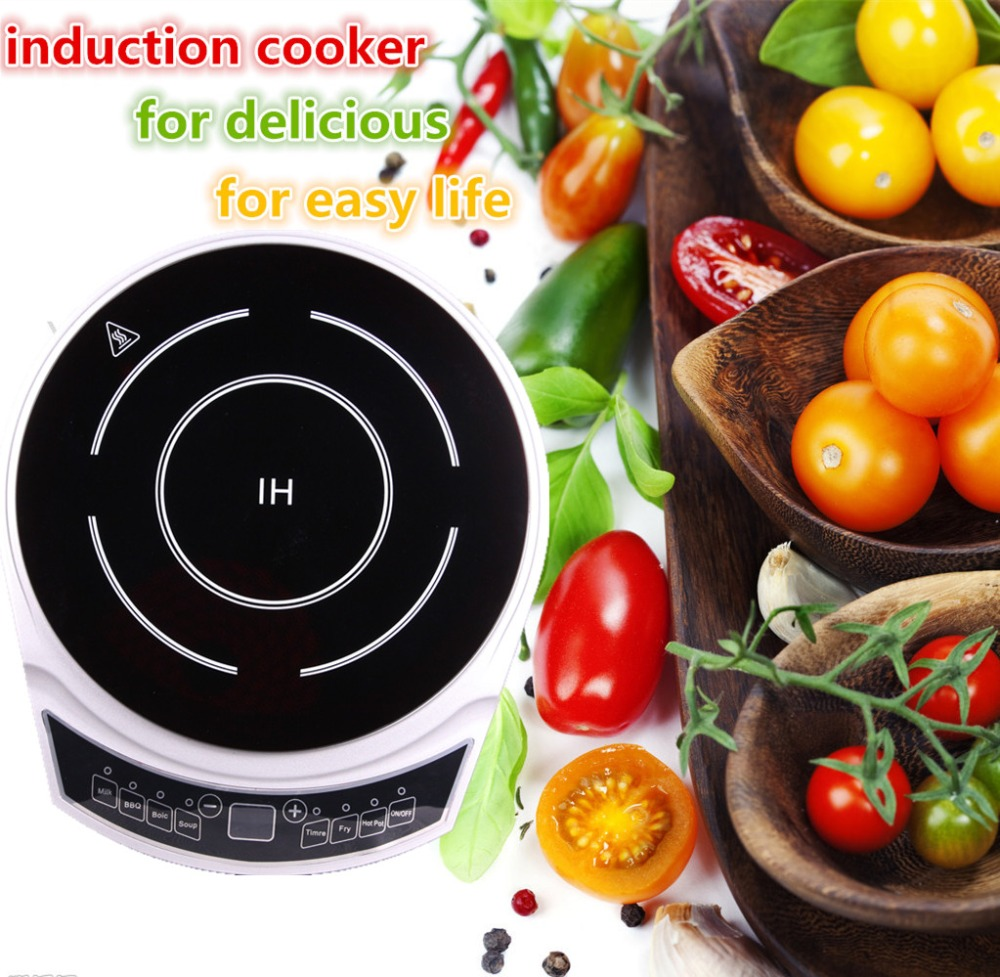 electrice kitchen induction and halogen cooker