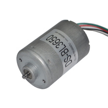 3650 6V 12V 24V high torque brushless dc motor