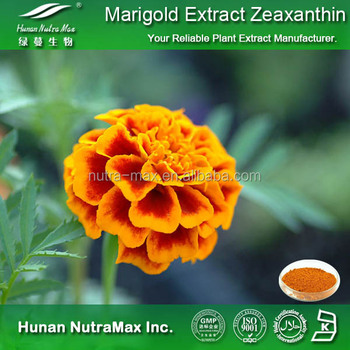 Golden Supplier Top Quality Marigold Extract Zeaxanthin 5%10%20% with CAS.No.: 144-68-3