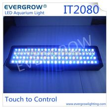 Evergrow IT2080 led lighting aquarium artificial fish