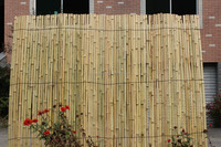 Cheap split bamboo fence