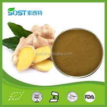 Factory supply Instant ginger powder.